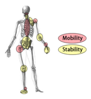 Stabilitymobility